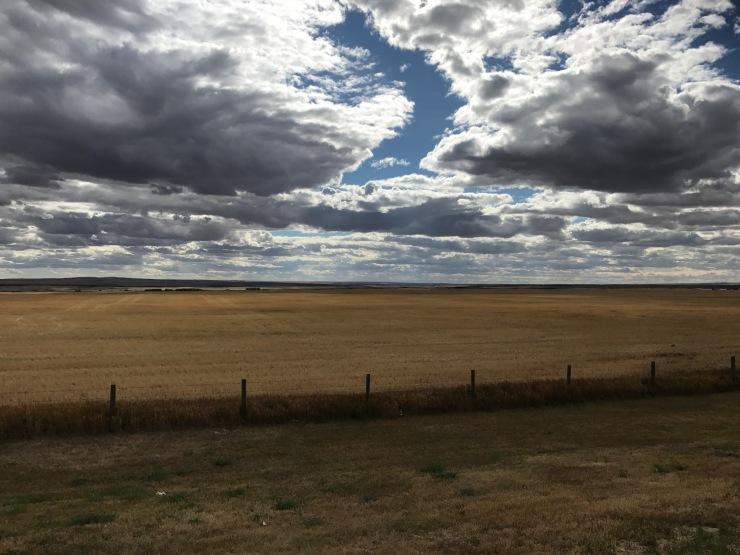 Alberta plaines