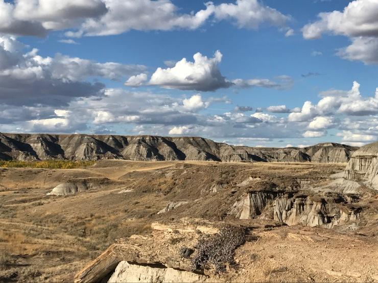 Dino landscape 1