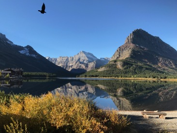 Swiftcurrent lake 1